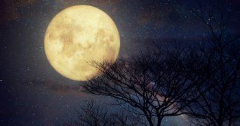สำนวนภาษาอังกฤษเกี่ยวกับดวงจันทร์-XChange English